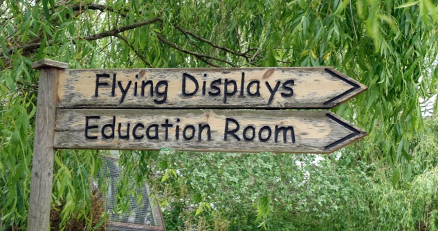 Flying display sign